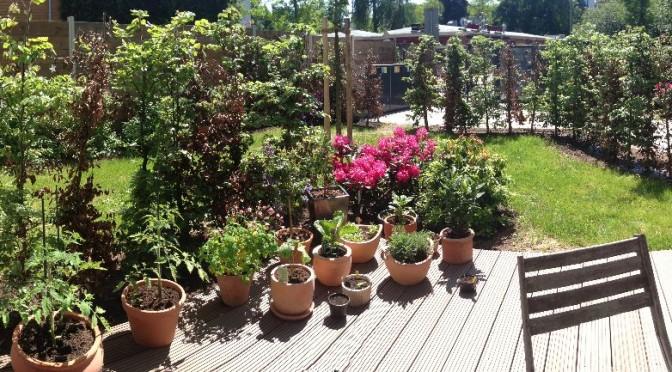 Garten ohne Garten